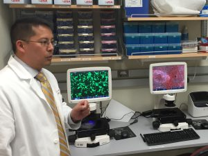A man in a lab coat talking about images of cells