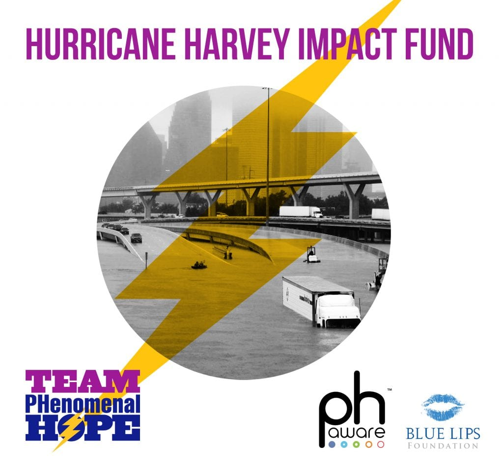 Hurricane Harvey Unmet Needs Impact Fund partners